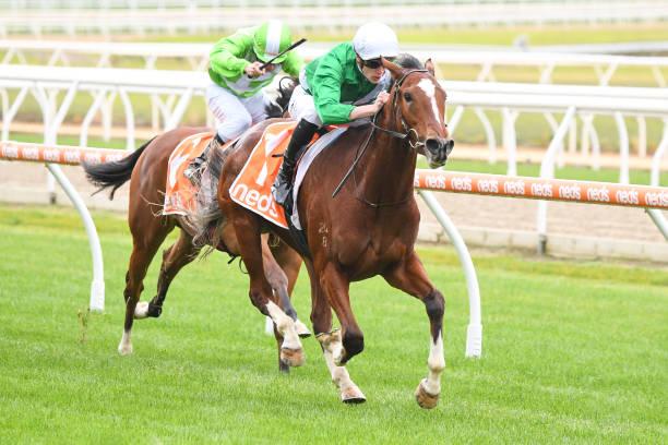 AUS: Mornington races