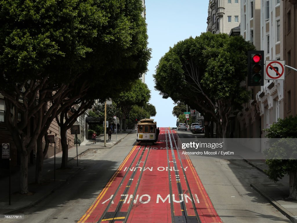 Bus On Road Amidst Trees Against Sky In City : Stock Photo