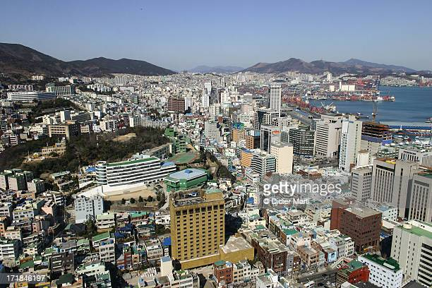 busan cityscape - didier marti stock photos and pictures