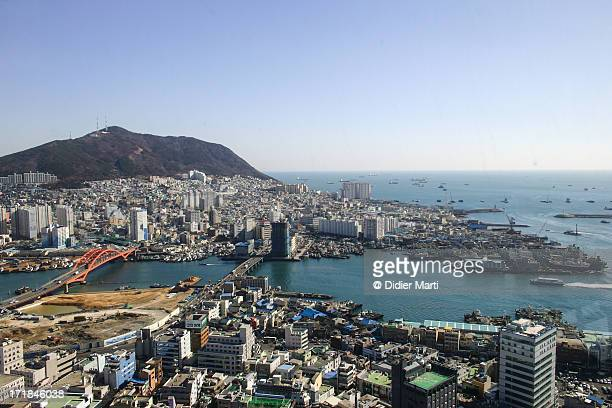 busan harbour - didier marti stock photos and pictures
