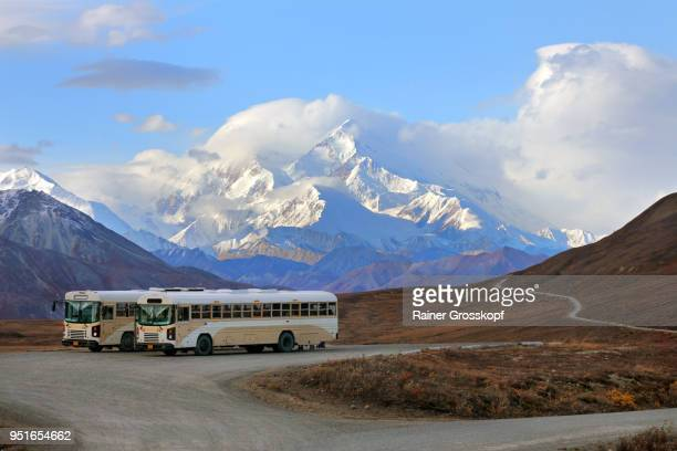 Buses and tourists at viewpoint with Mount Denali in background