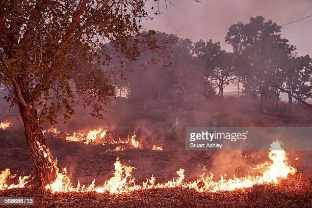 Bush fire burning off
