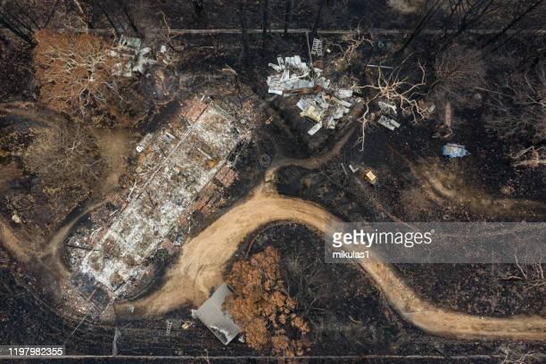 bush fire destruction - blue mountains stock pictures, royalty-free photos & images