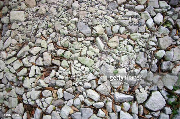 bush land walking track made from crushed rocks - crushed leaves stock pictures, royalty-free photos & images