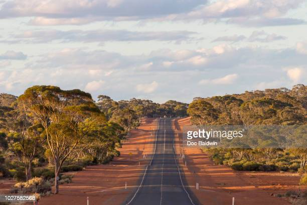 bush road - western australia stock pictures, royalty-free photos & images