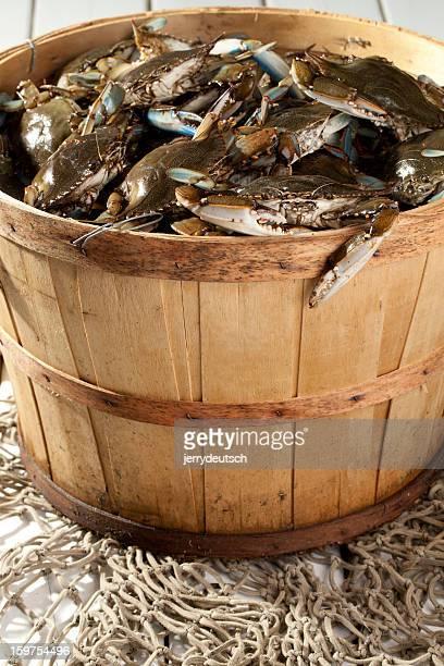 Bushel Basket of Blue Claws