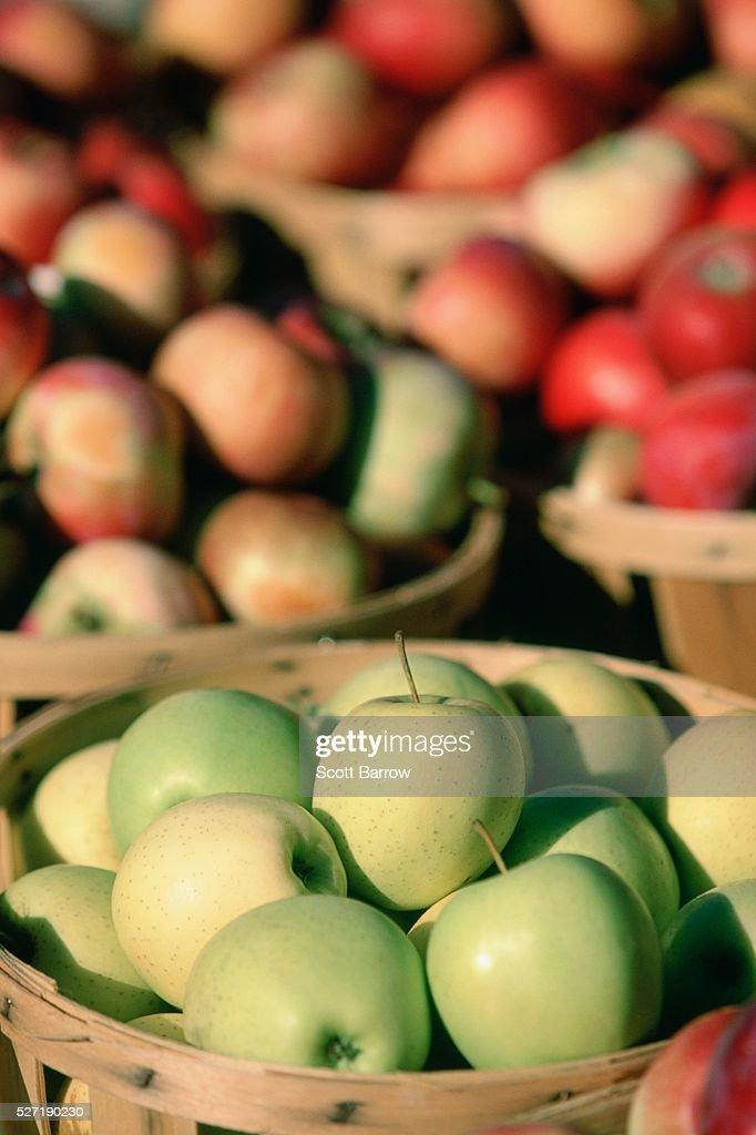 Bushels of apples : Foto de stock