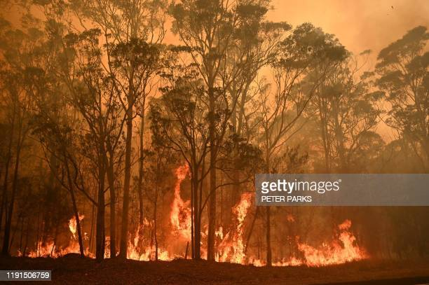 TOPSHOT A bushfire burns in the town of Moruya south of Batemans Bay in New South Wales on January 4 2020 Up to 3000 military reservists were called...