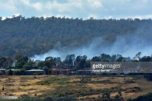 bushfire close to residential area in launceston tasmania australia - launceston australia imagens e fotografias de stock