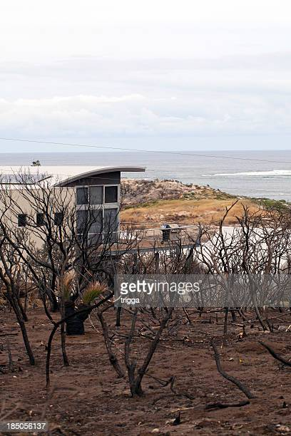 Bushfire damage in Australia