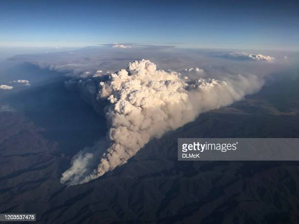 bushfire in australia - forest fire stock pictures, royalty-free photos & images