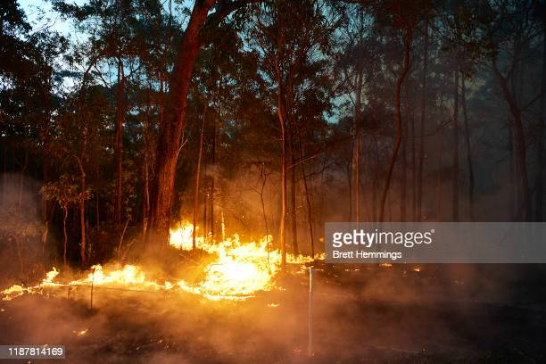 A bushfire is pictured along Putty Road on November 15 2019 in Colo Heights Australia The warning has been issued for a 80000hectare blaze at Gospers...