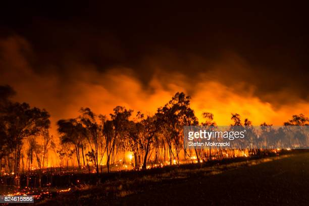 a bushfire or wildfire burning in outback australia - forest fire stock pictures, royalty-free photos & images