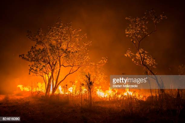 a bushfire or wildfire burning in outback australia - bushfires stock photos and pictures