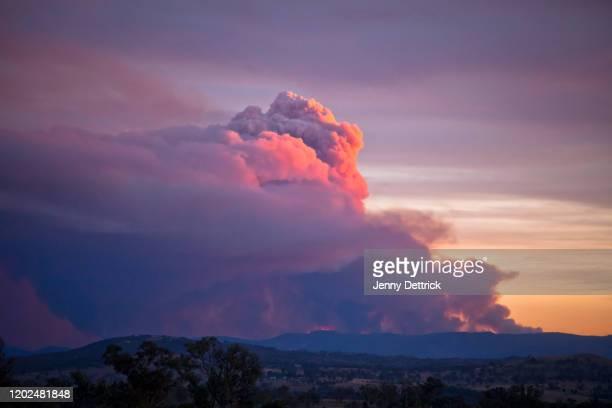 bushfire smoke at sunset - australia bushfire stock pictures, royalty-free photos & images