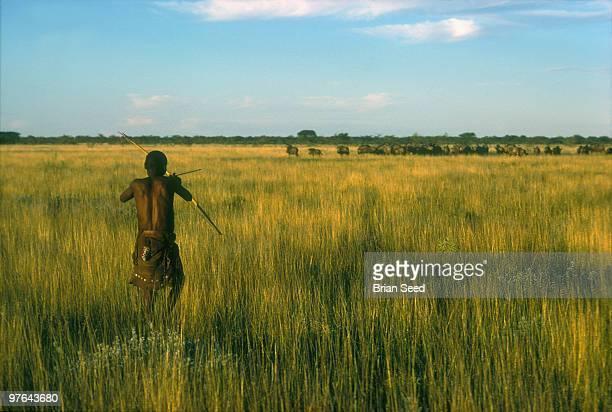 Bushman or San hunting Wildebeeste with bow and arrow Etosha Pan Namibia