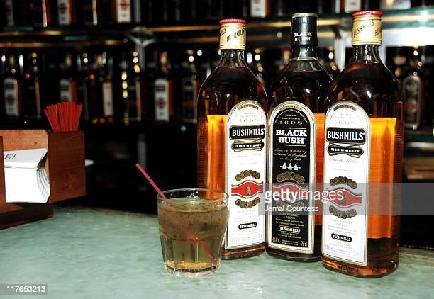Bushmills Atmosphere during Stacy Keibler Hosts Bushmills Legends Pub Celebrating St Patrick's Eve at Bushmills Legend Pub in Nre York New York