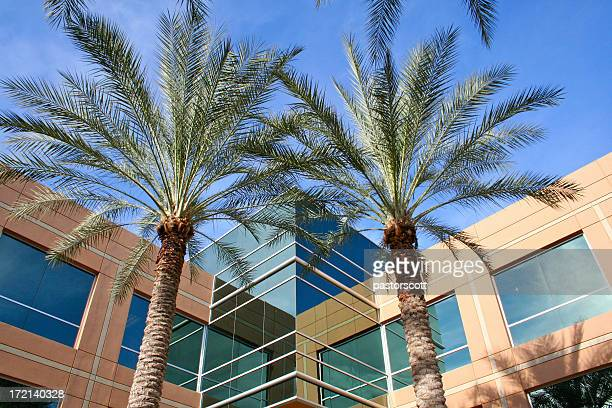 business building series in scottsdale - scottsdale arizona stock pictures, royalty-free photos & images