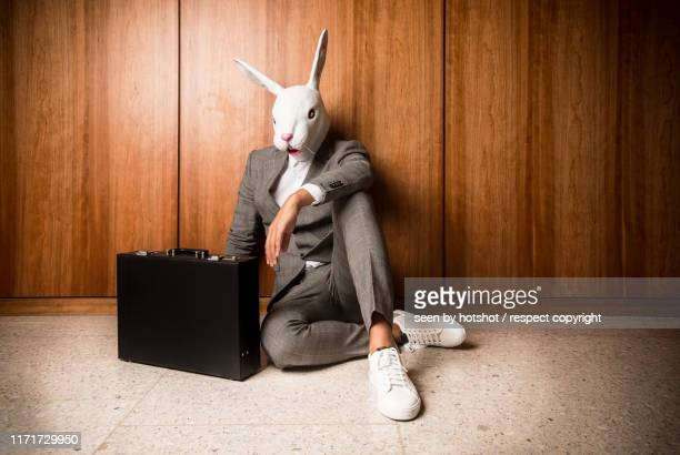 business bunny - rabbit mask stock pictures, royalty-free photos & images