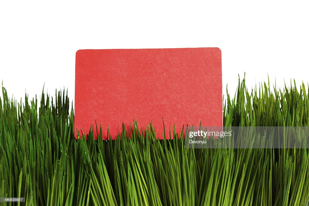 Business Card and green grass : Stock Photo