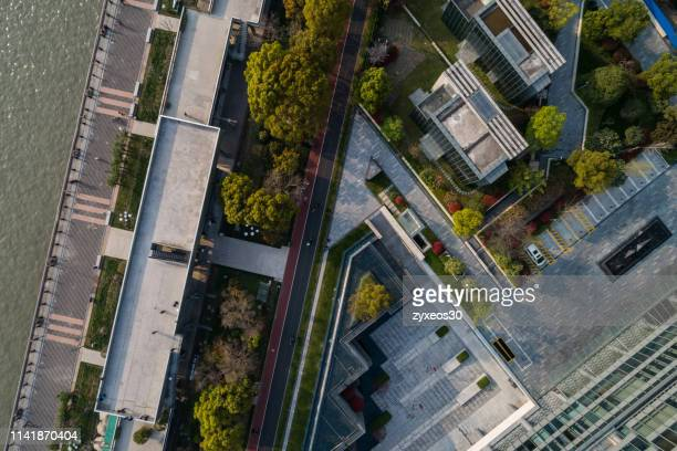 business community in lujiazui,pudong district,shanghai - global fashion collective stock pictures, royalty-free photos & images