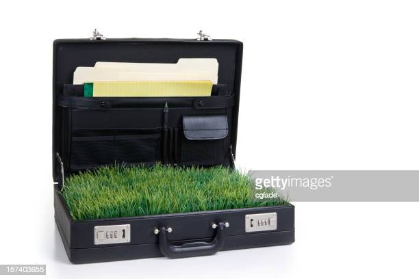 Business Going Green
