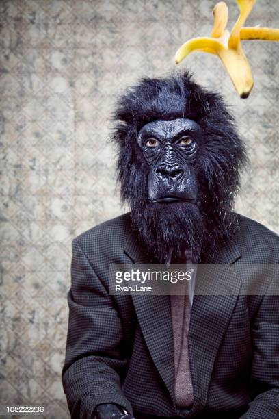 business gorilla and food fight flying banana - monkey suit stock pictures, royalty-free photos & images