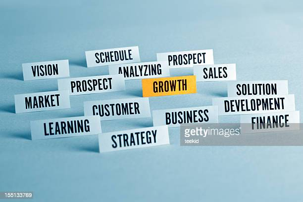 Business Growth Concpet