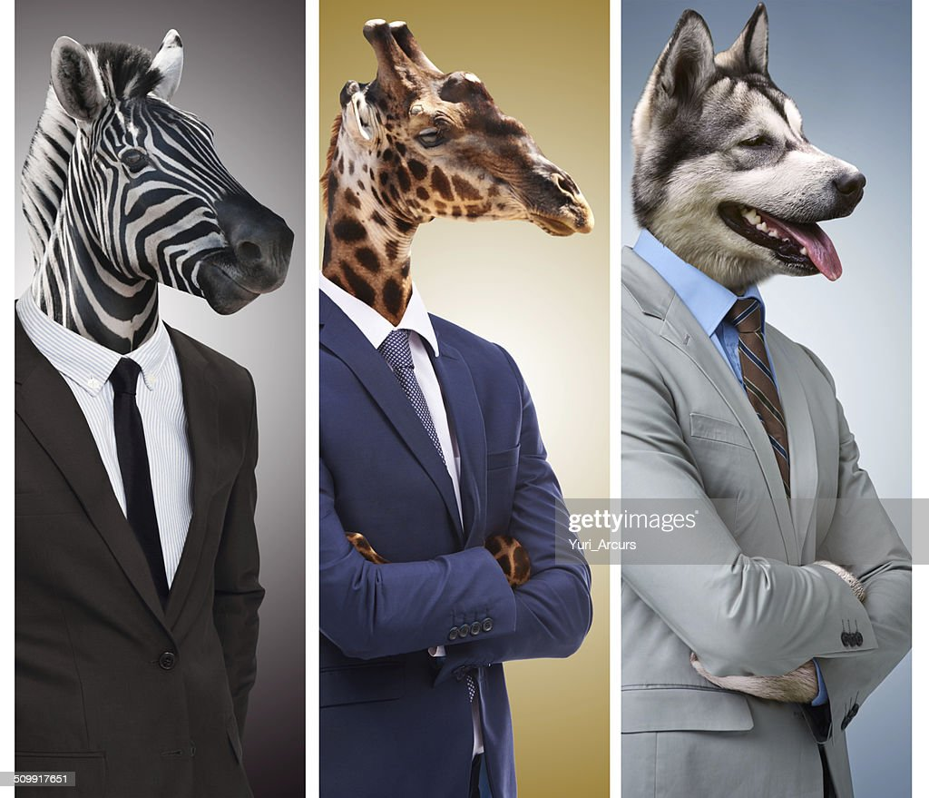Business - it's a jungle out there : Stock Photo