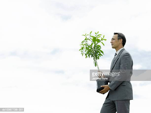 Business man carrying tree, outdoors