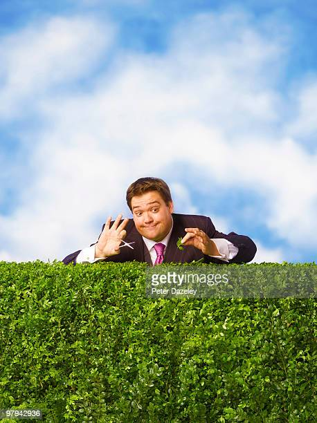 Business man trimming hedge with nail scissors