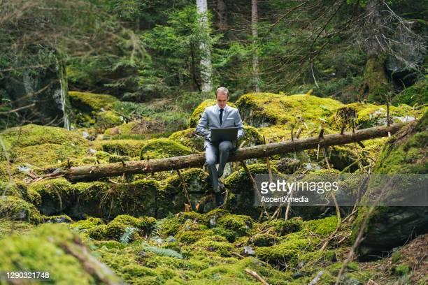 l'homme d'affaires travaille à distance dans la forêt luxuriante le matin - concepts et thèmes photos et images de collection