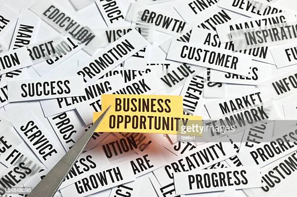 Oportunidad de negocio concepto