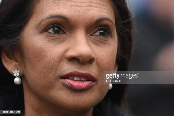 Business owner and antiBrexit activist Gina Miller speaks to the media on College Green outside the Houses of Parliament in central London on January...
