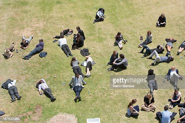 Business people relaxing in sunny field