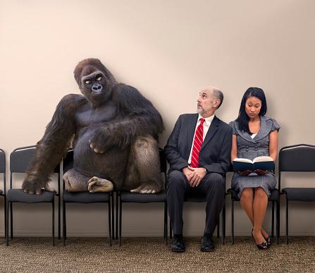 Business people sitting next to gorilla - gettyimageskorea