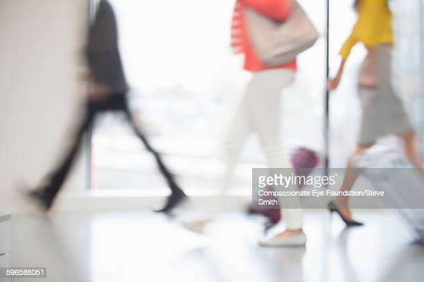 Business people with luggage in airport