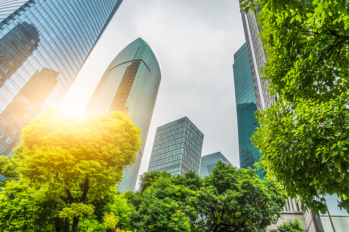 Business towers and Green leaves 1076482942