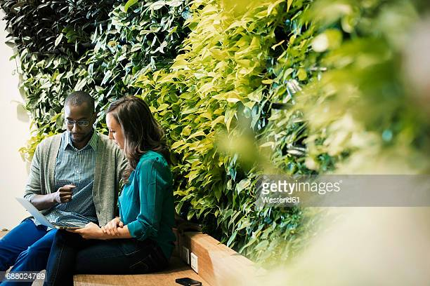 Businessman and woman sitting in front of green plant wall, using laptop
