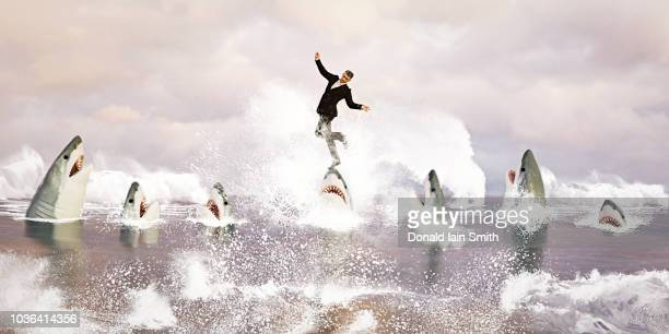 businessman balancing on head of shark - shark attack - fotografias e filmes do acervo