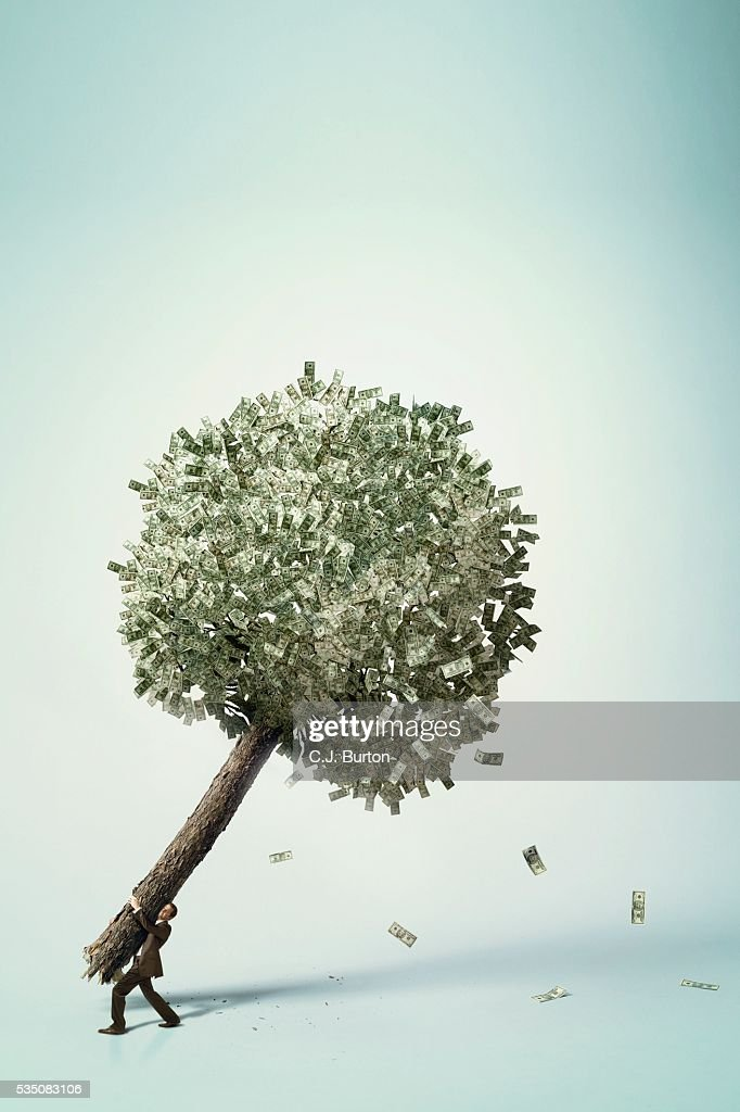 Businessman carrying money tree : Stock Photo