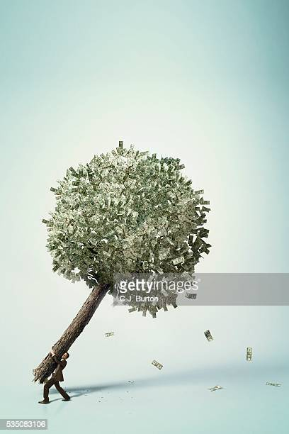 businessman carrying money tree - anti gravity foto e immagini stock