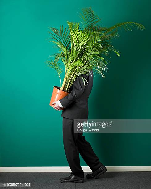 Businessman carrying potted plant, side view