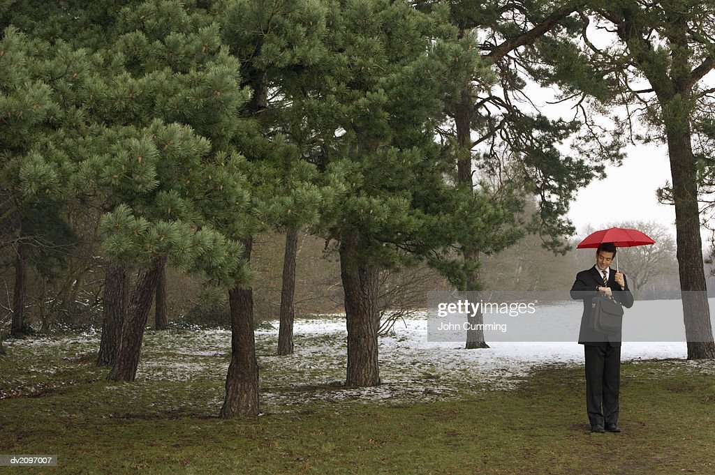 Businessman Checking the Time in a Wintry Forest : Stock Photo