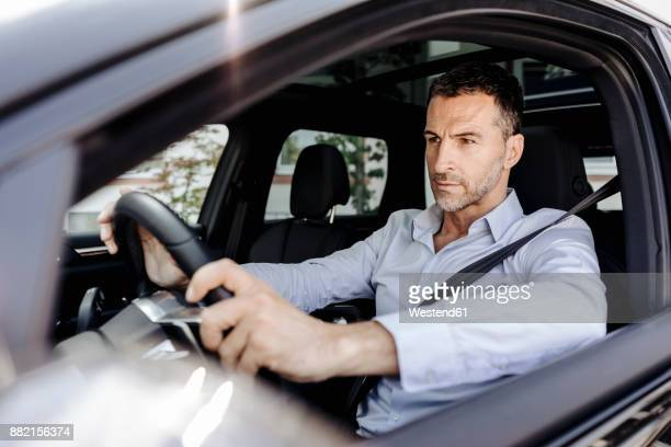 businessman driving car - driving stock pictures, royalty-free photos & images