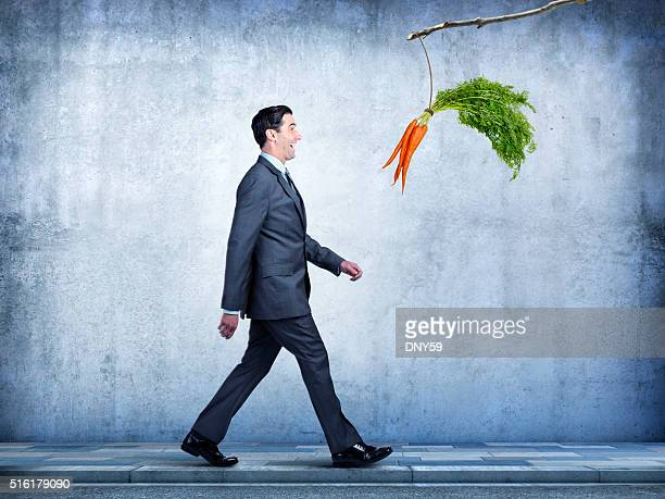 Businessman Follows Carrots Dangling From A Stick
