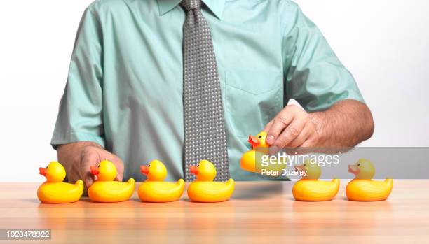 businessman getting his ducks in a row - arranging stock pictures, royalty-free photos & images