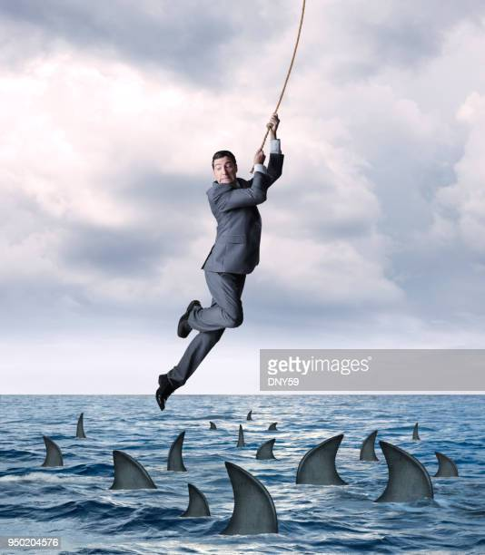 businessman hanging from rope above circling sharks in ocean - shark fin stock photos and pictures