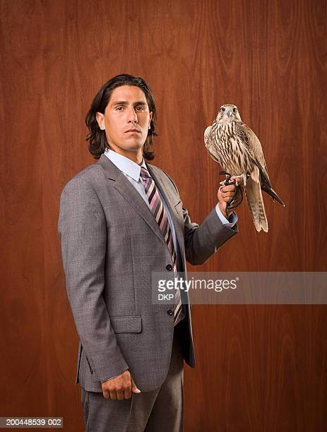 businessman holding falcon, portrait - hawk bird stock photos and pictures