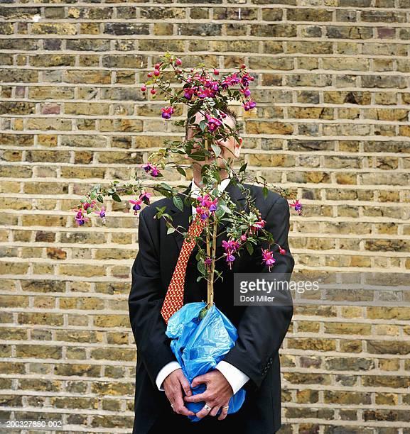 businessman holding fuchsia plant in plastic bag - jardinier humour photos et images de collection